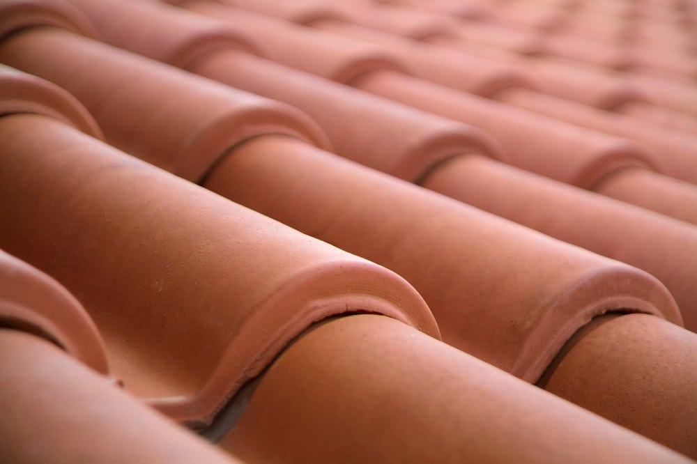 Close-up of roof tiles